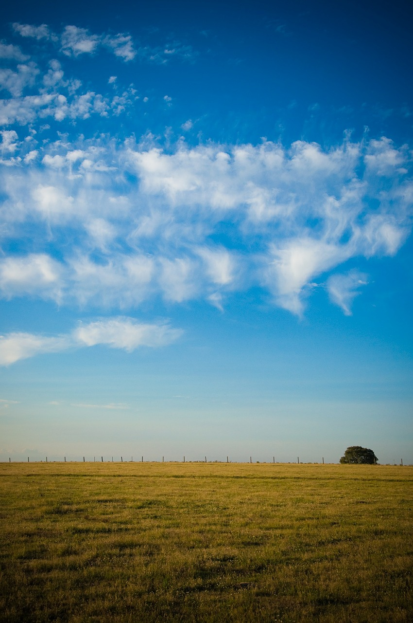 field sky clouds free photo