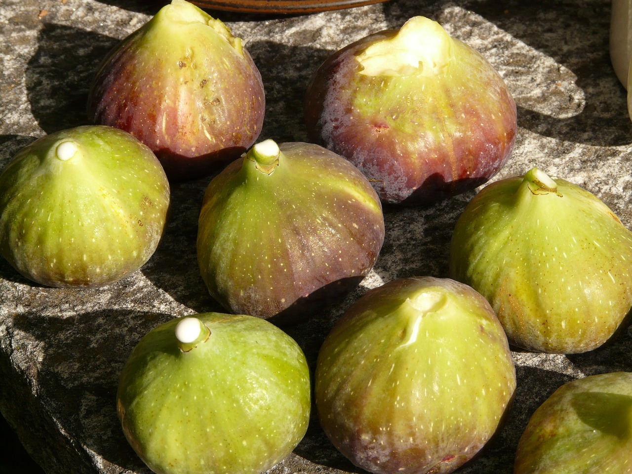 fig figs fruit free photo