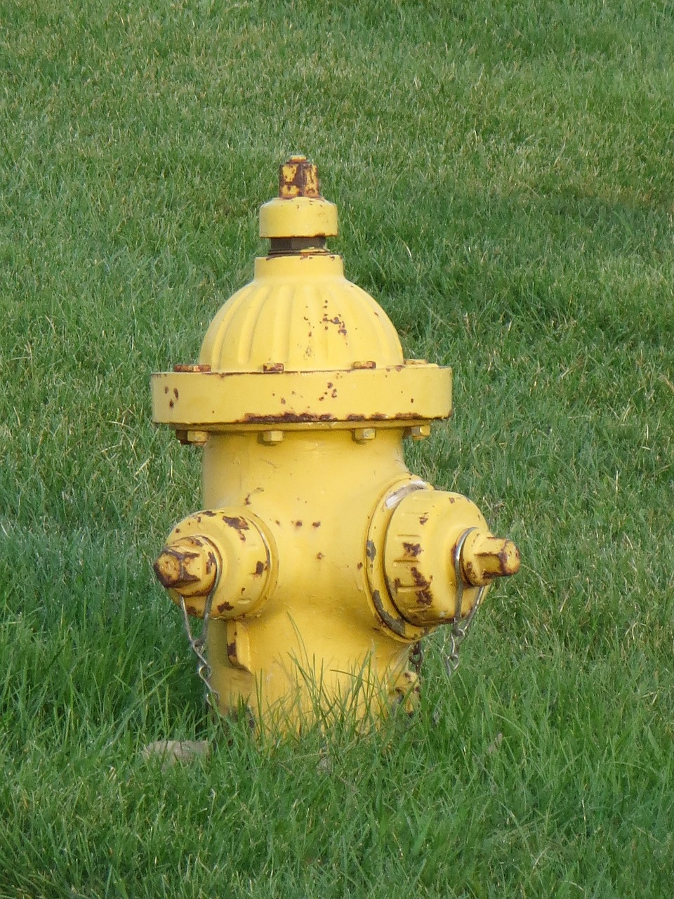 fire hydrant fire fighting free photo