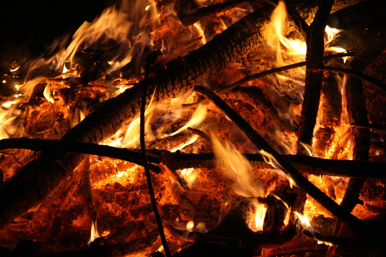 fire flame wood fire free photo