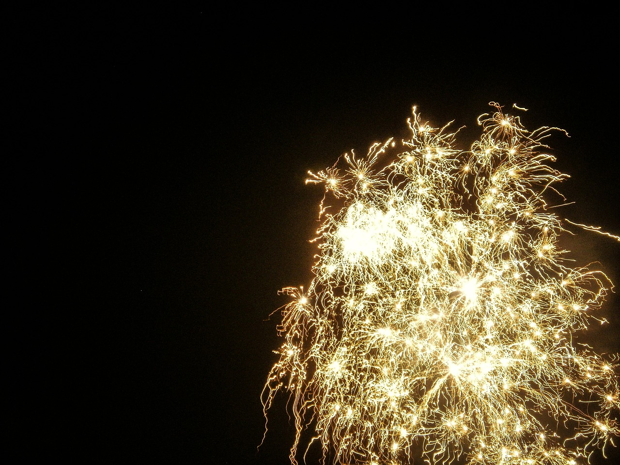 fireworks sylvester annual financial statements free photo