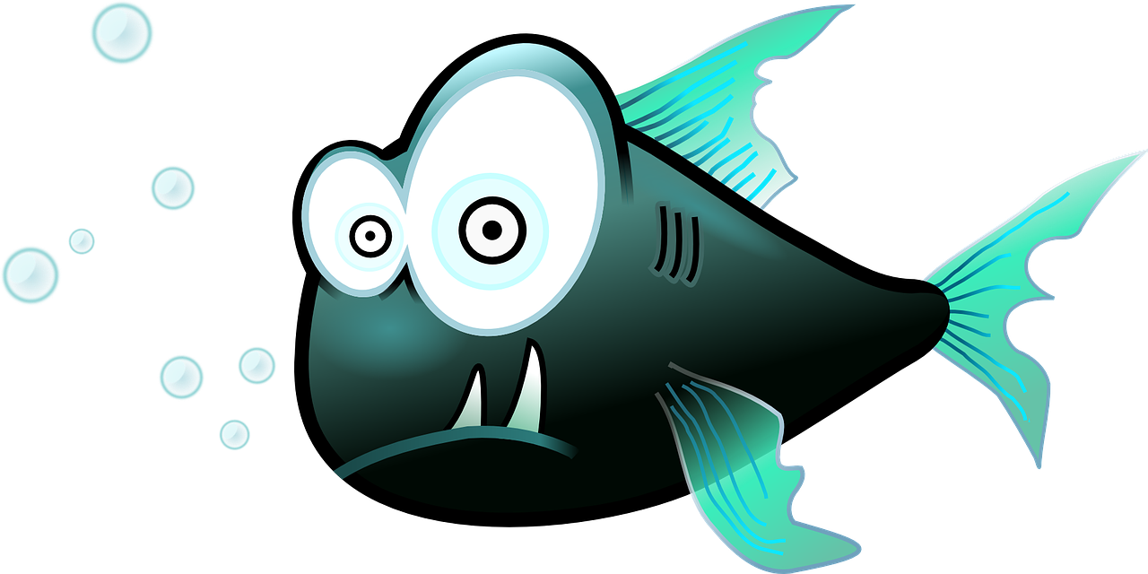 fish funny cartoon free photo