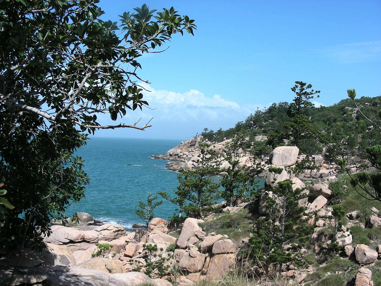 fish cove magnetic island queensland free photo