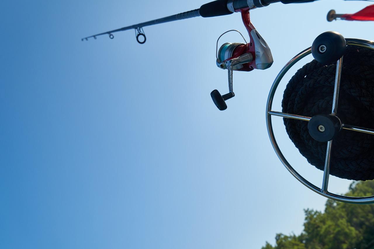 Fishing rod, fishing, fisherman, fish, fishing line - free image from  needpix.com