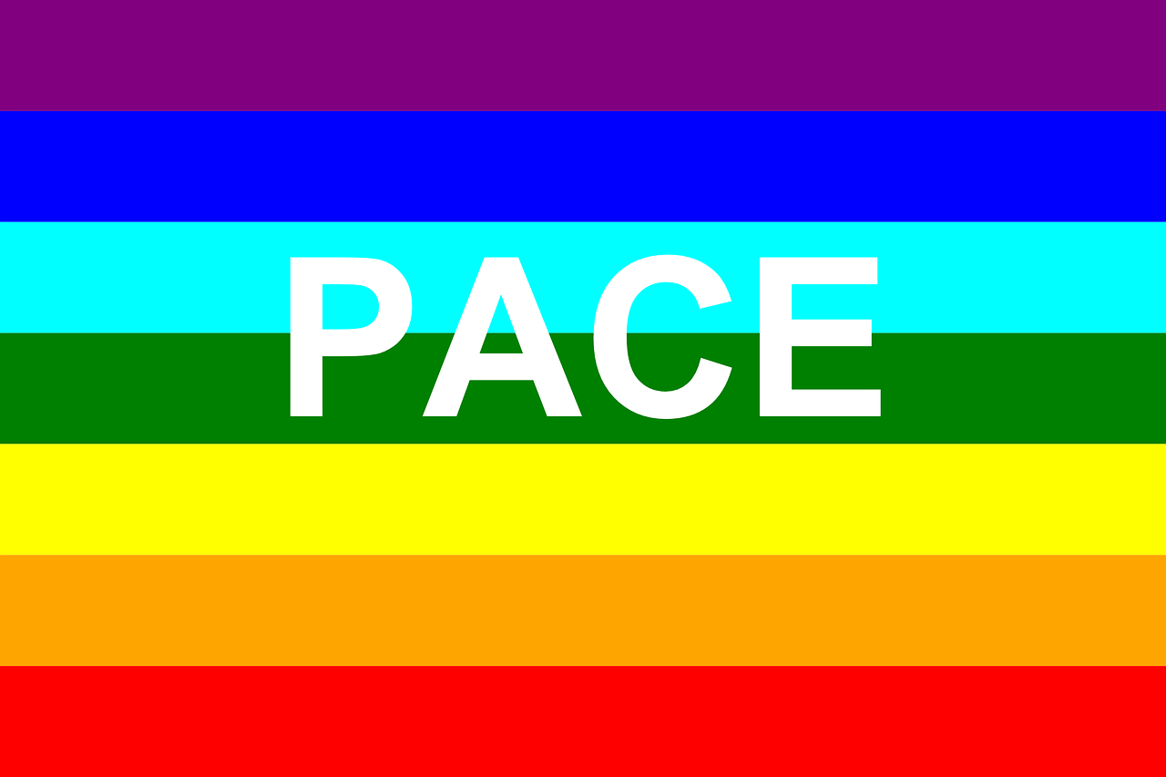 flag pace rainbow free photo