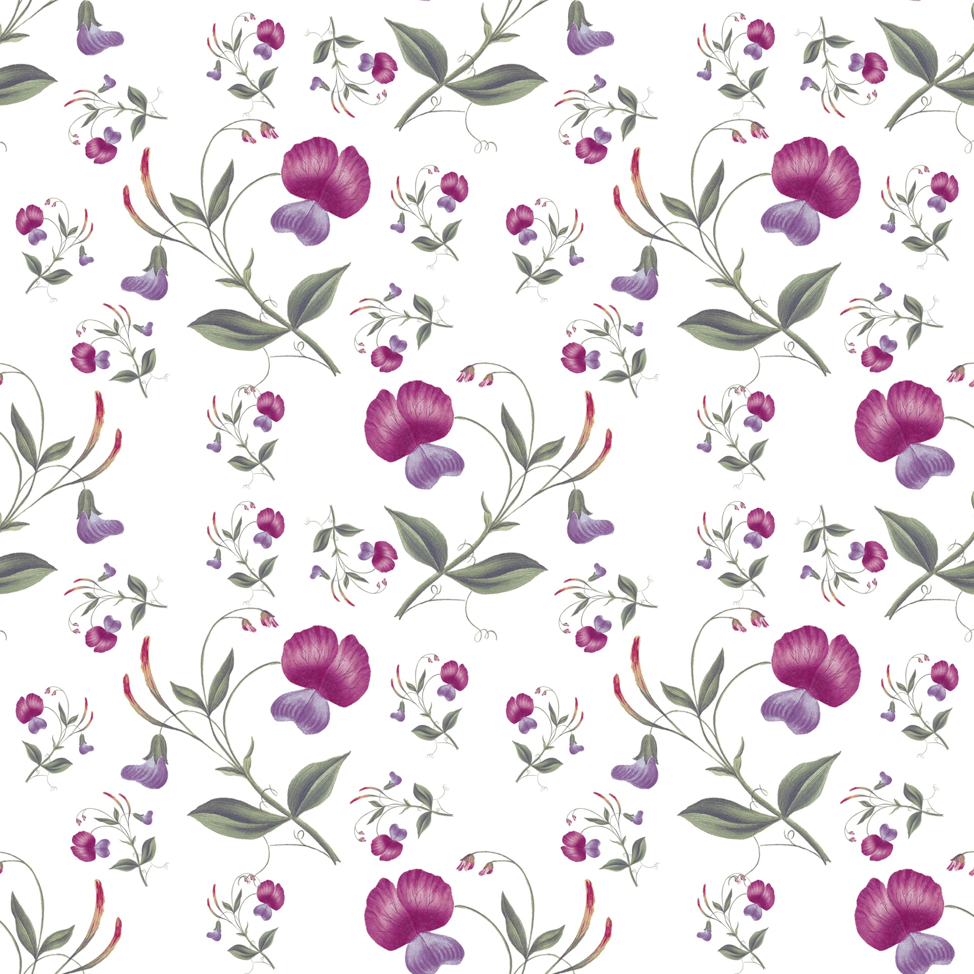 Floral Flowers Flower Wallpaper Paper Free Image From Needpix Com