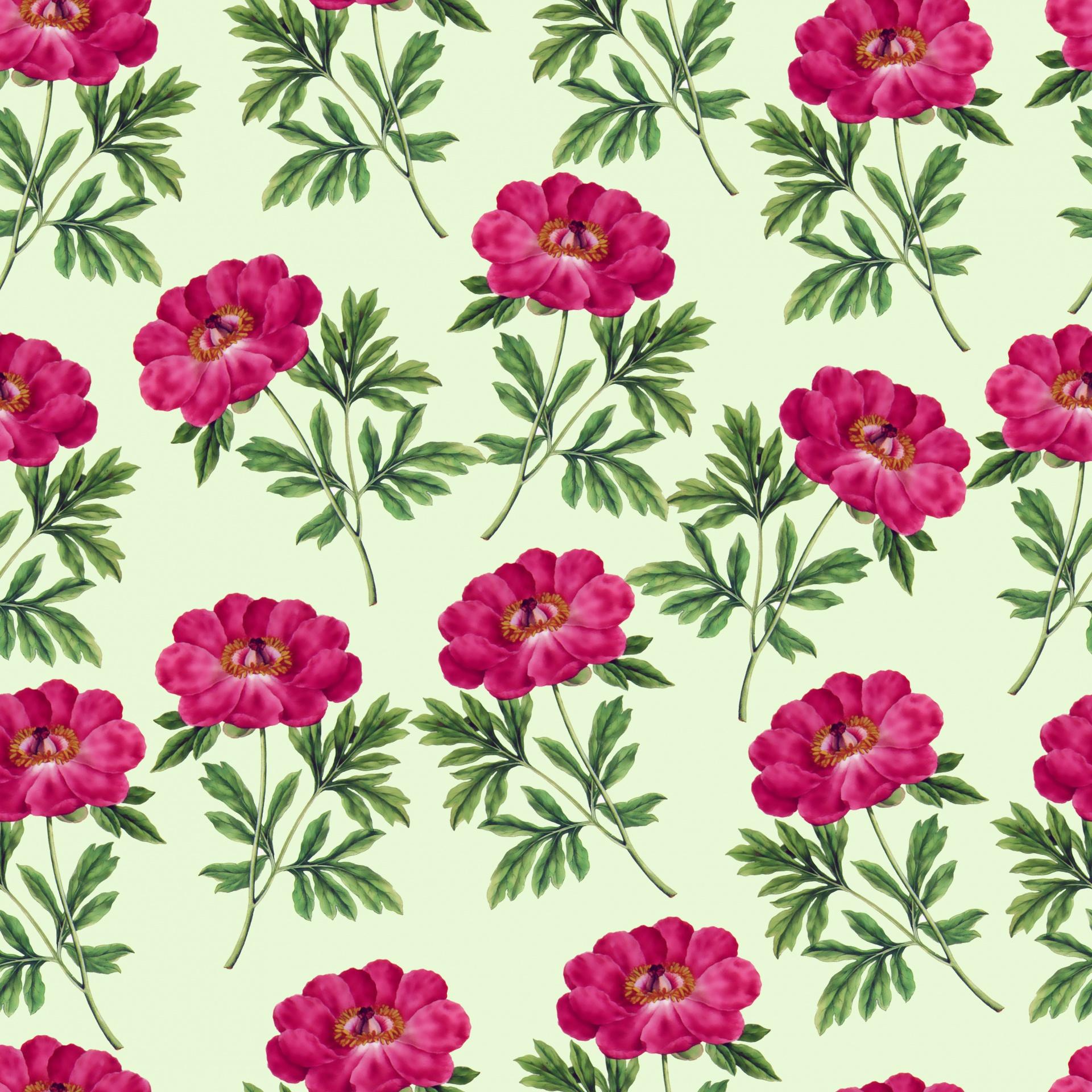 Floral Flowers Botanical Pink Vintage Free Image From Needpix Com