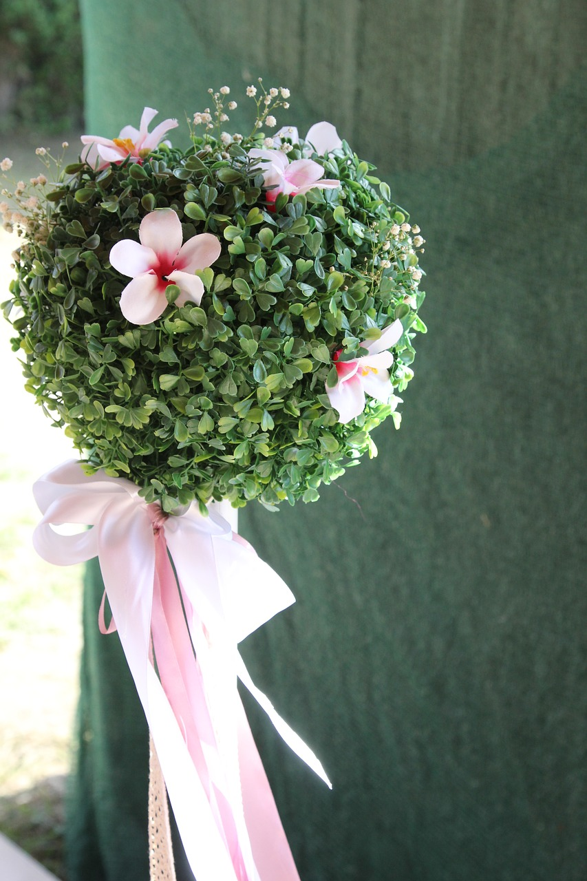 Flowerflower Ballpink Free Photo From Needpix