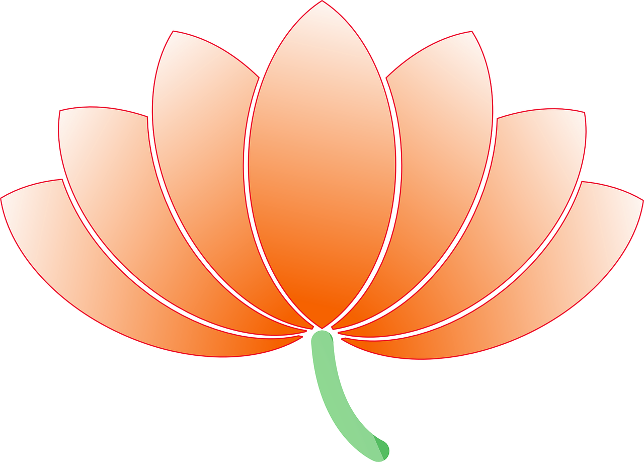 flower lotus nature free photo