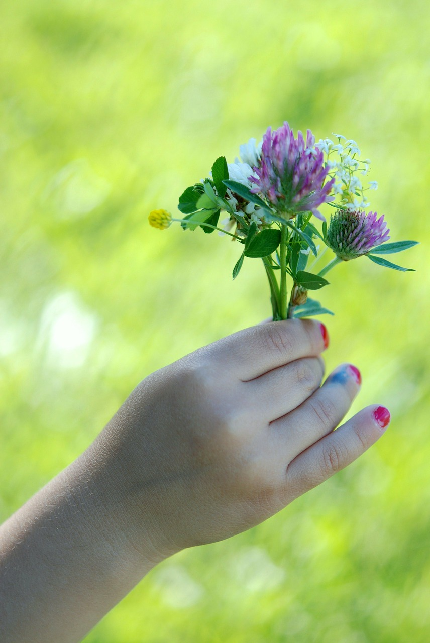 flower hand green free picture