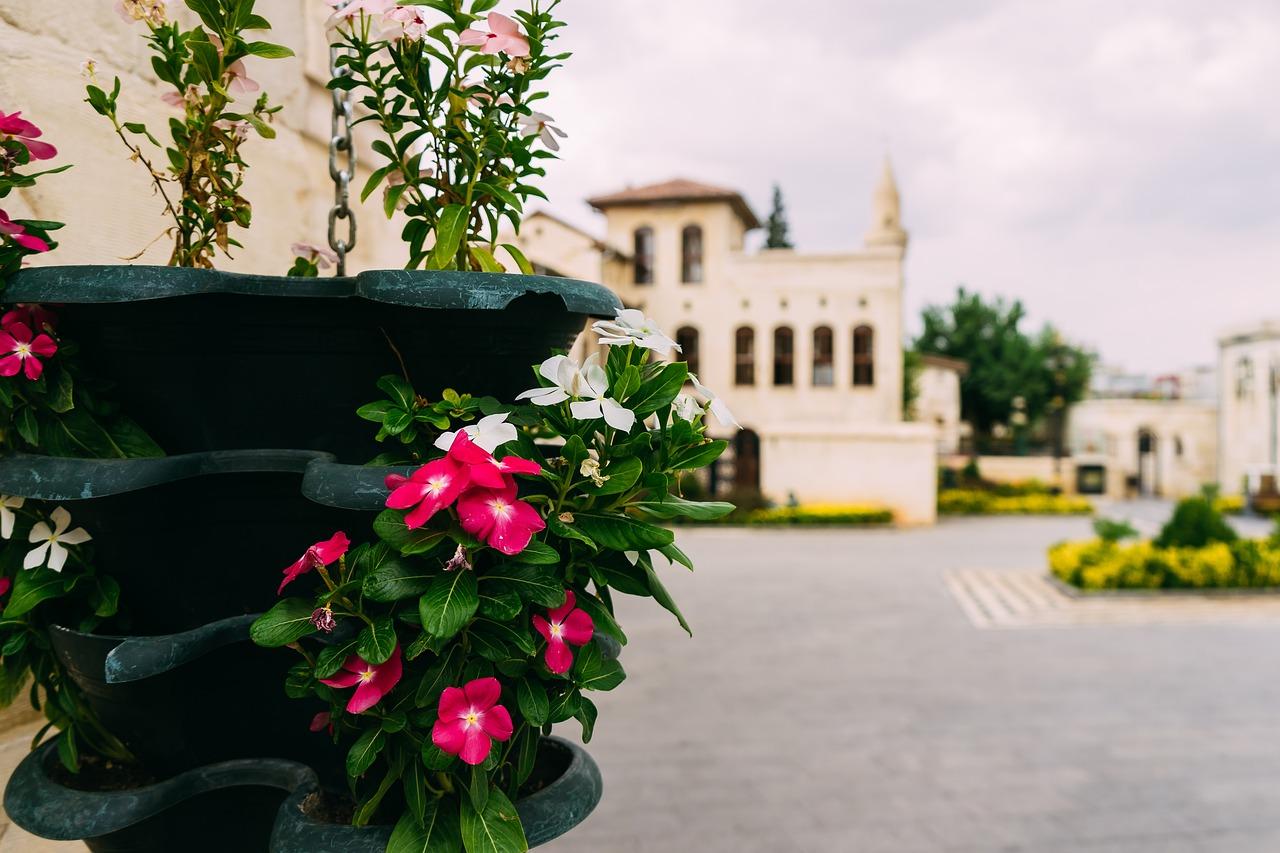 Flower basketflowerbeautifulcolorfulold town free photo from flower basket flower beautiful izmirmasajfo
