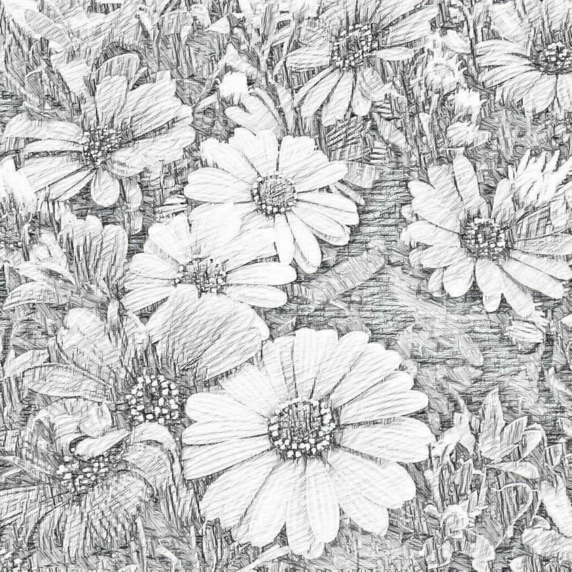Flowerssketchpencildrawingplants Free Photo From Needpix