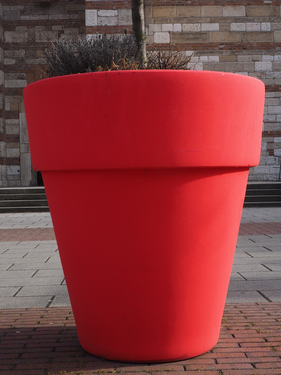 flowerpot plus size red free photo