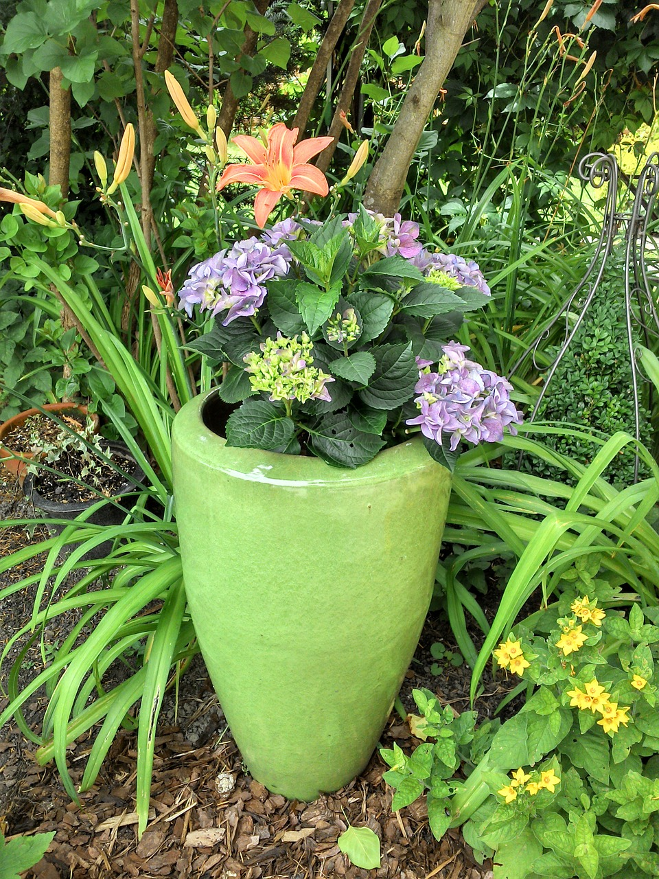 flowerpot,garden,flower vase,vase,flowers,bloom,purple,free pictures, free photos, free images, royalty free, free illustrations, public domain