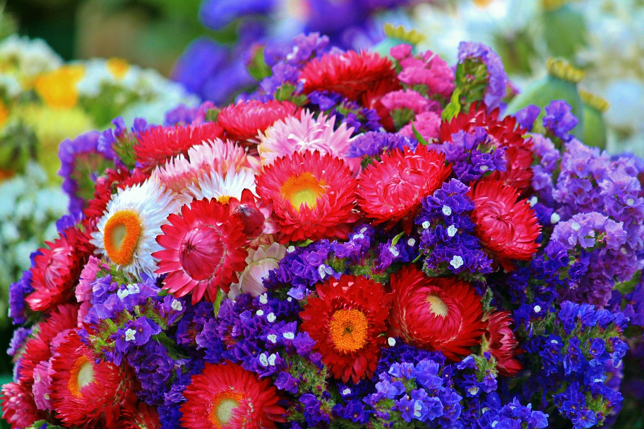 flowers bouquet of flowers flora free photo