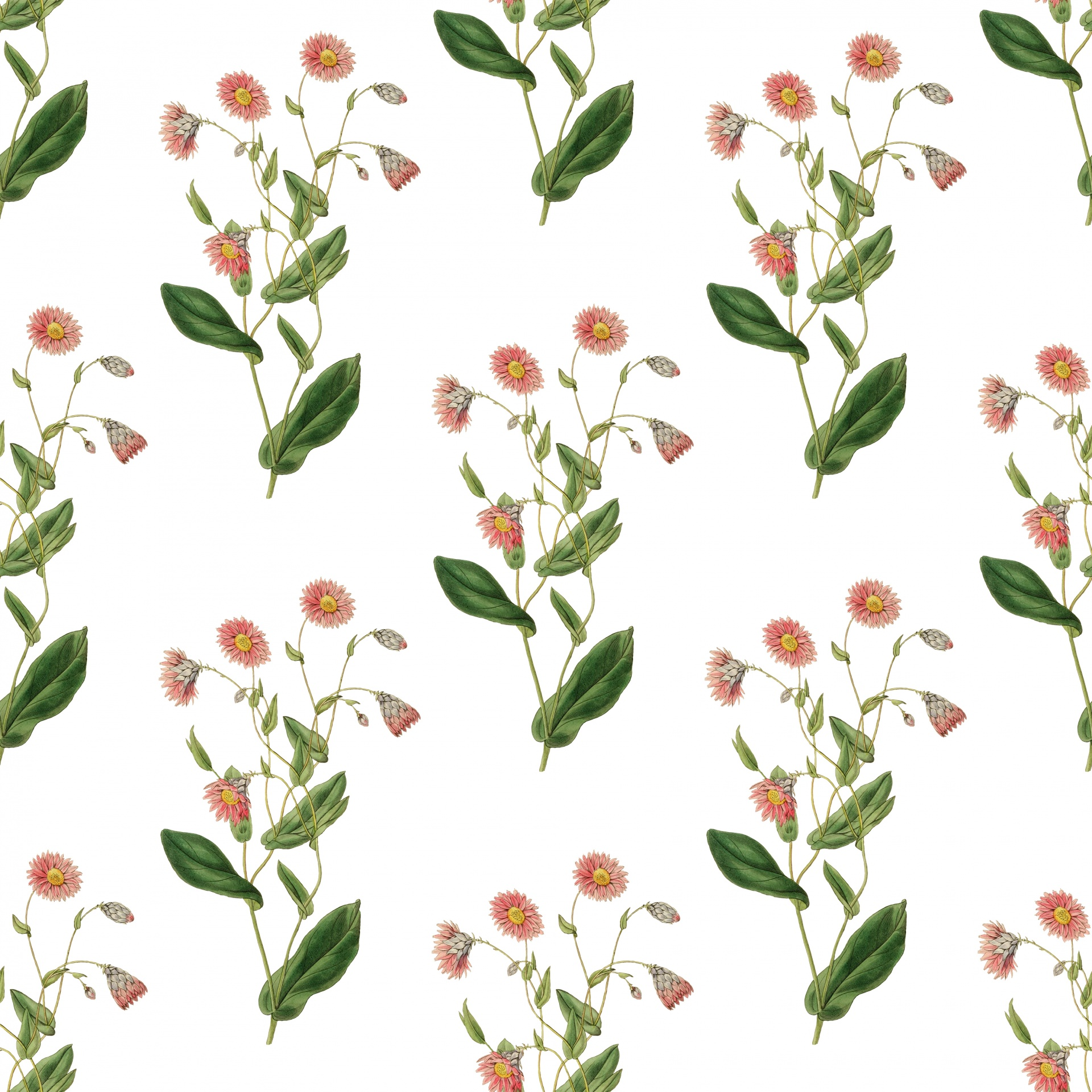 Flowers Vintage Floral Background Wallpaper Free Image From