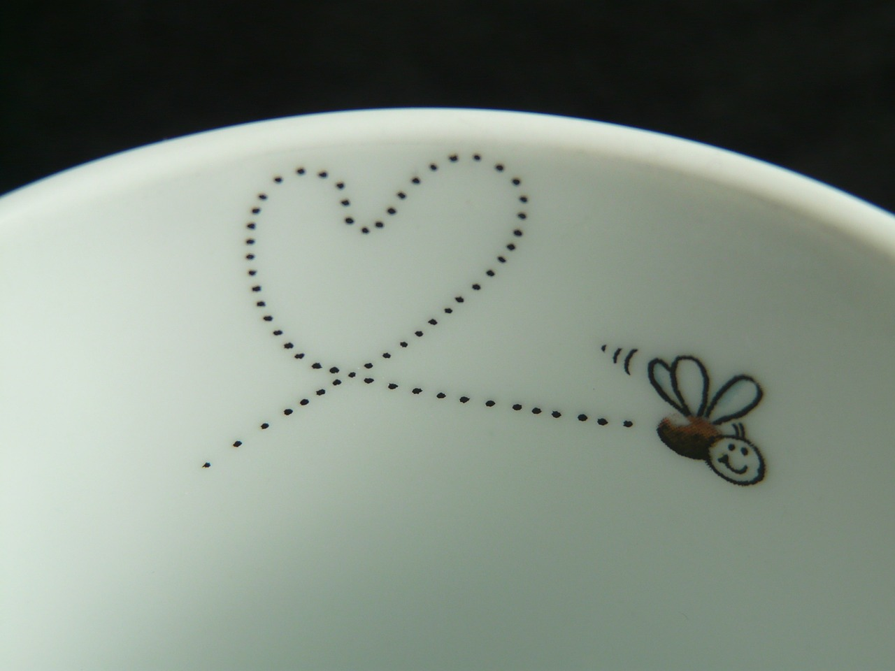 fly mosquito heart free photo