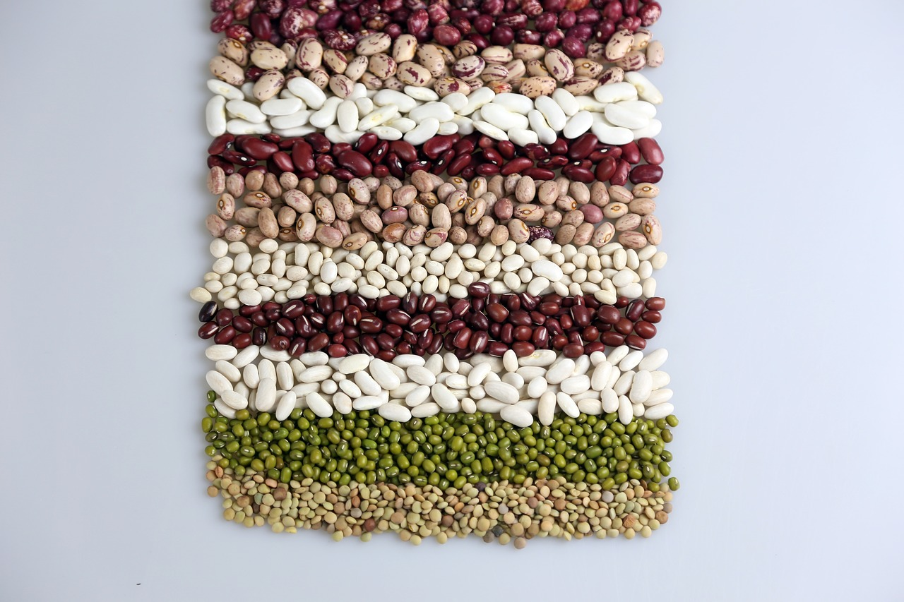 food background beans free photo