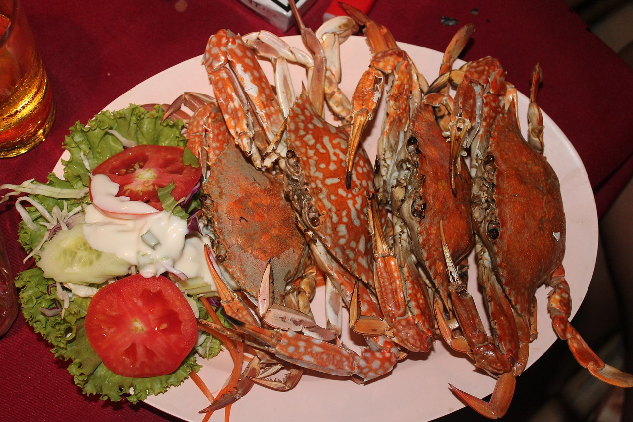 food crabs free pictures free photo