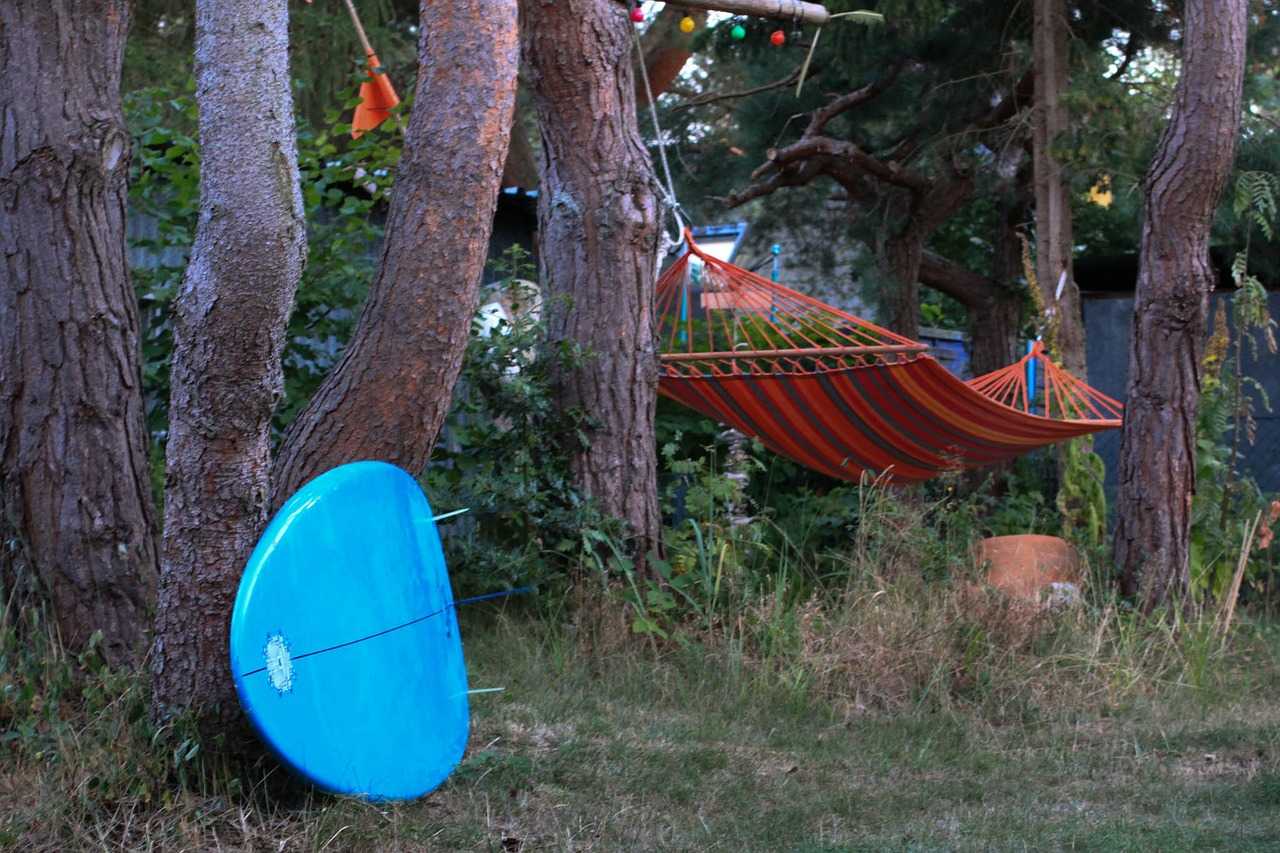 forest surfboard hammock free photo