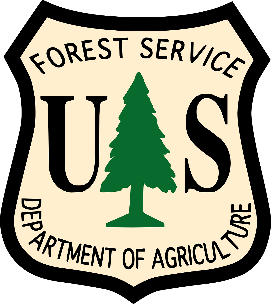 forest service usa free photo