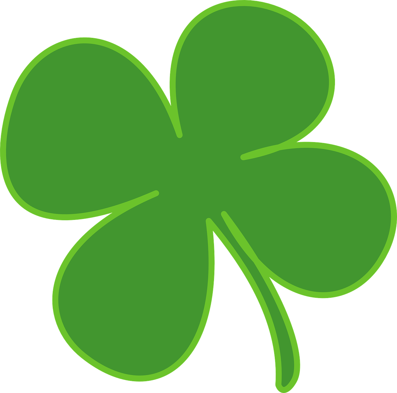 four leaf clover shamrock luck free photo