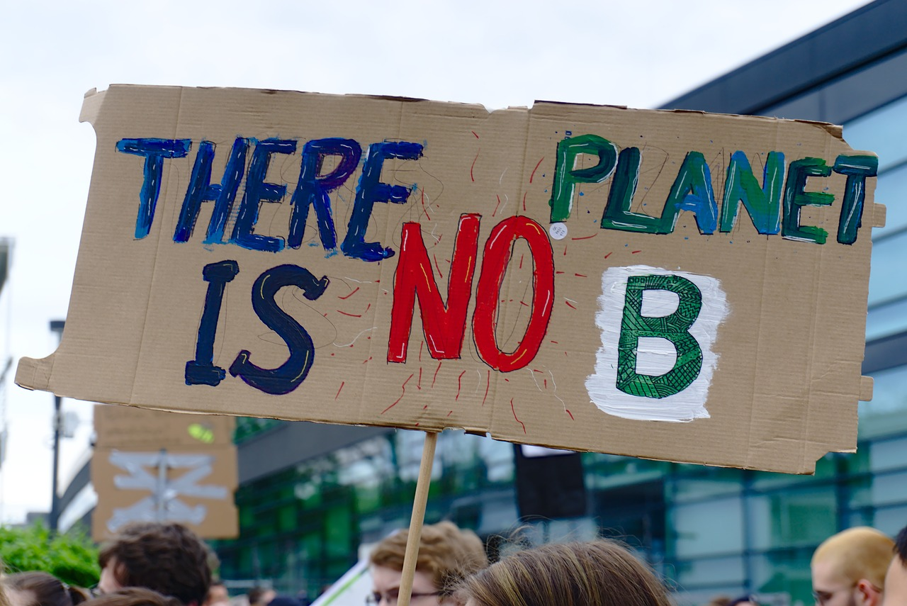 fridays for future  climate strike  demonstration free photo