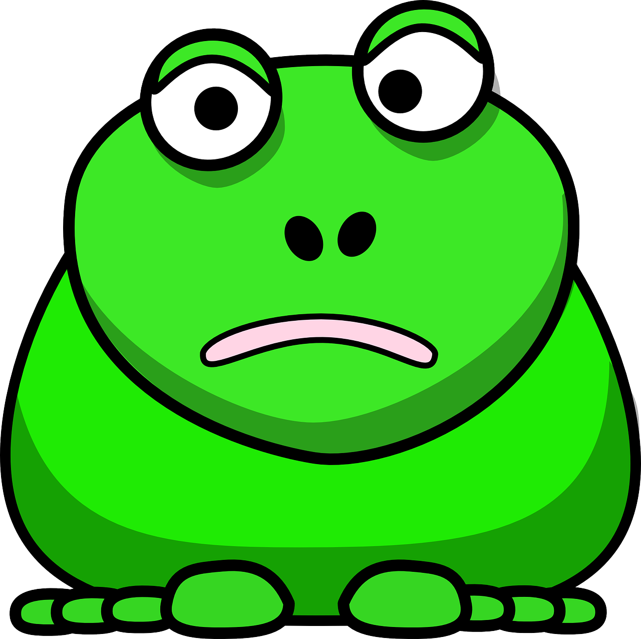 frog face expression free photo