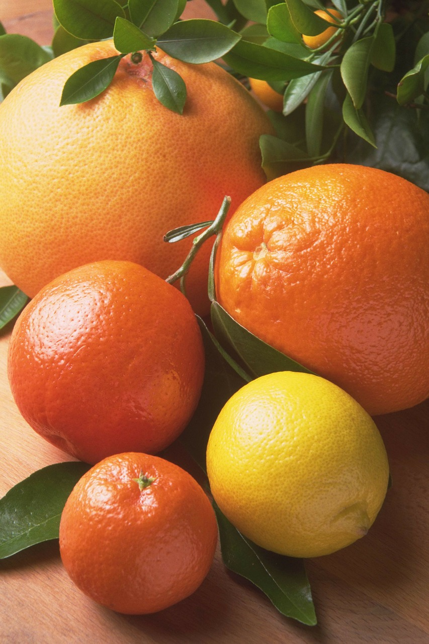 fruits orange citrus fruits free photo