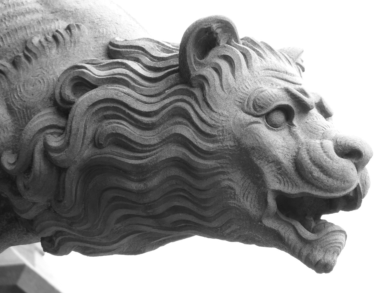 gargoyle lion mythical creatures free photo