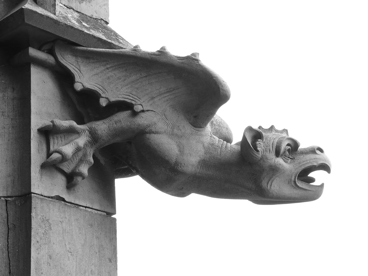 gargoyle,figure,dragon,claw,ulm cathedral,münster,building,architecture,mythical creatures,ulm,drainage,black and white,creepy,dangerous,free pictures, free photos, free images, royalty free, free illustrations, public domain