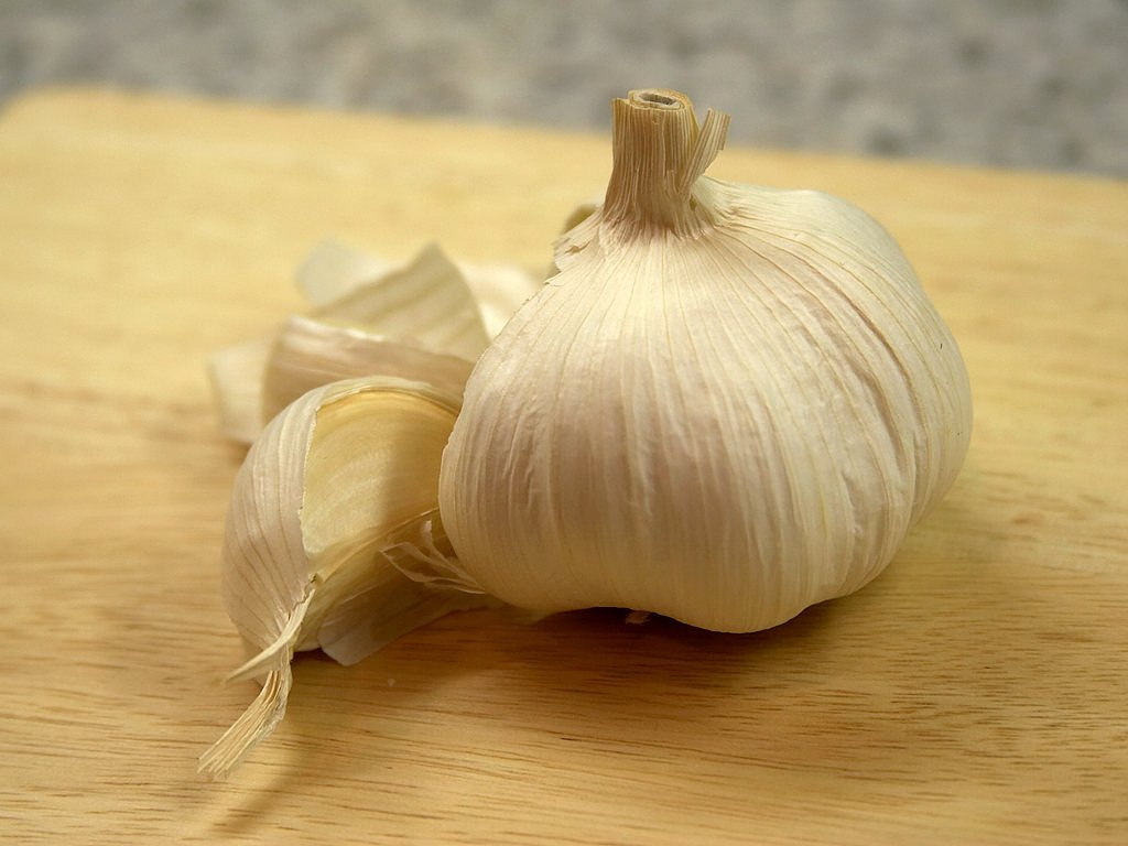 garlic ingredient sharp free photo