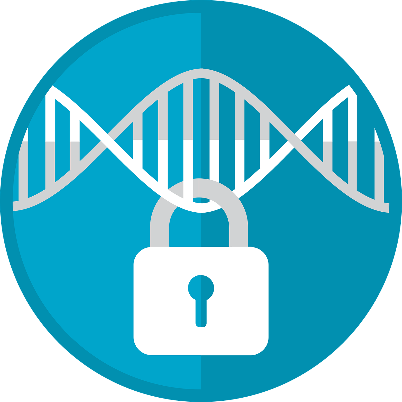Download free photo of Genomic privacy, genomic security, genome ...