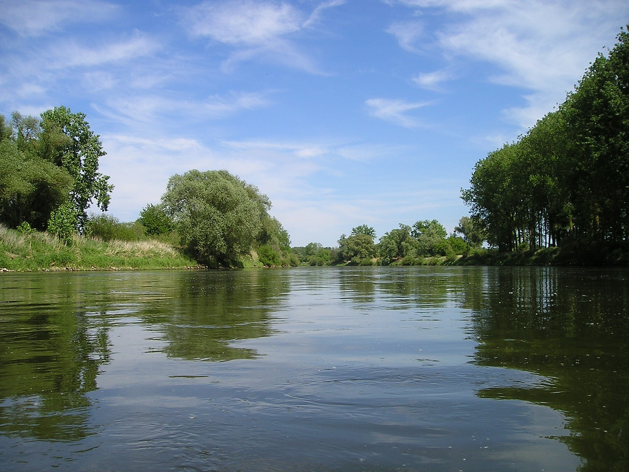 germany river nature free photo