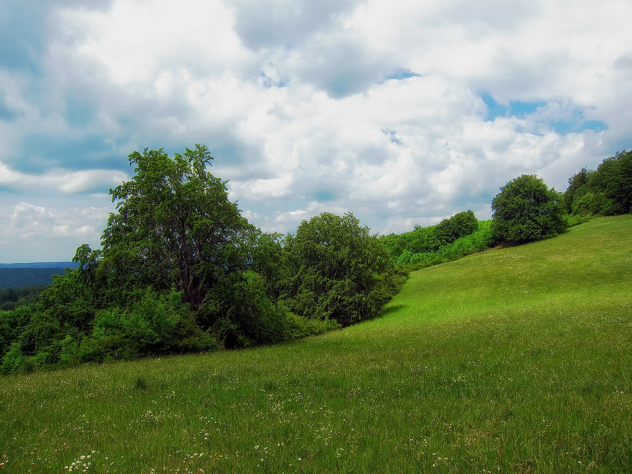 germany meadow landscape free photo