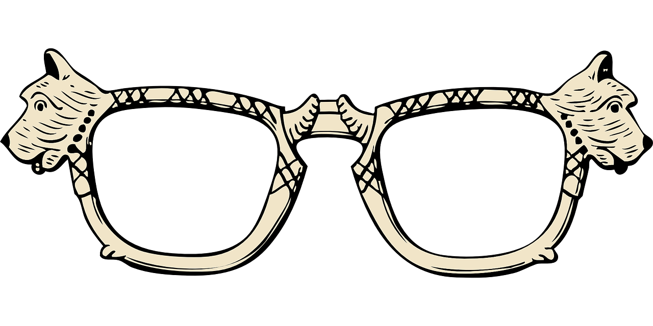 glasses eyeglasses spectacles free photo