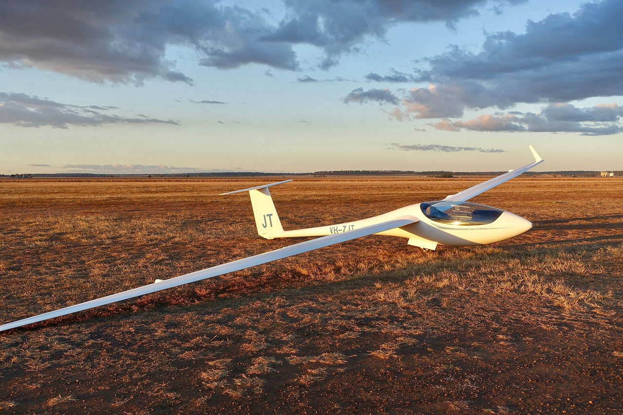 Glider,wings,sailplane,gliding,aviation - free photo from needpix com