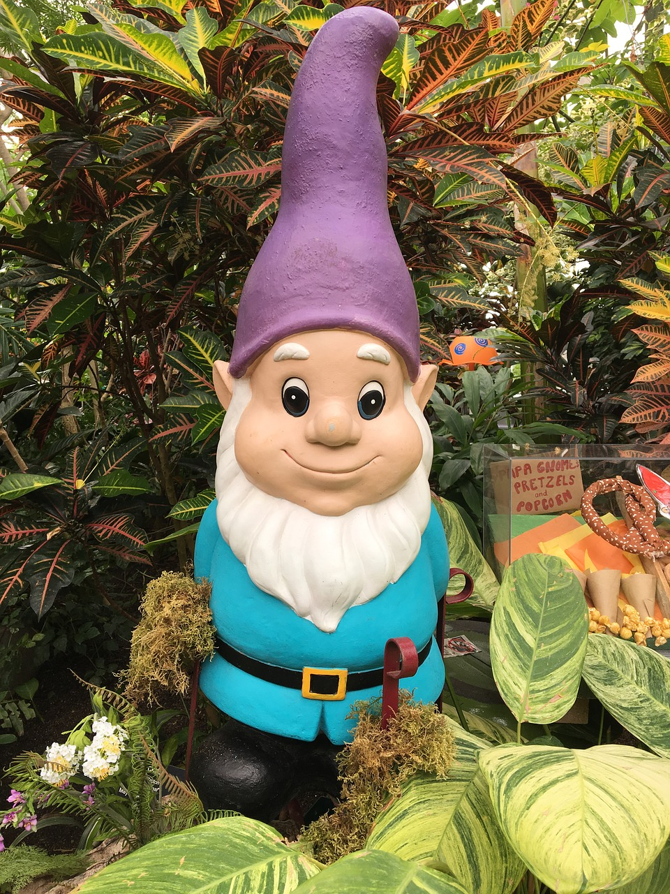Gnome depiction