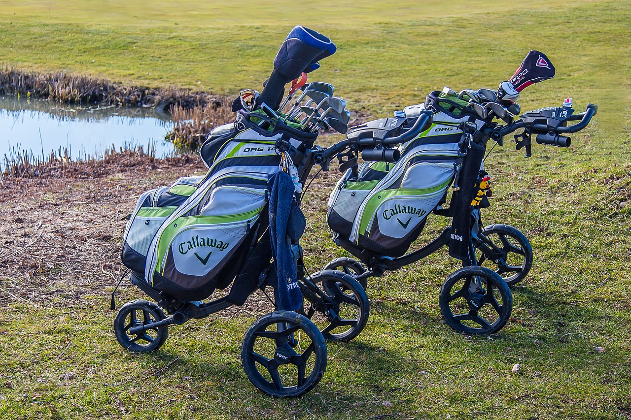 golf caddy golf carts free photo