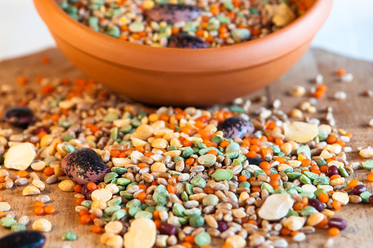 grain cereal bowl bean free photo