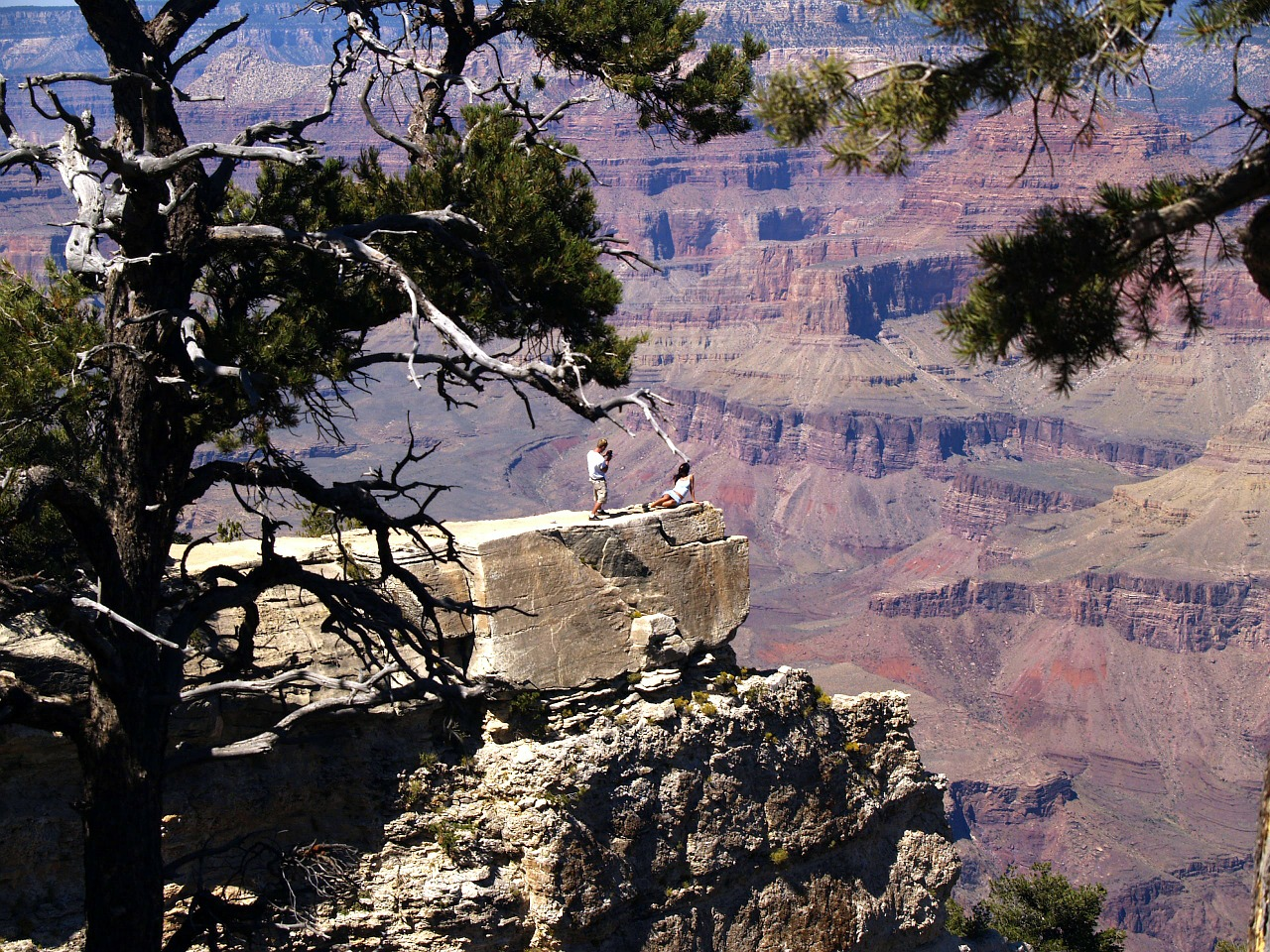 grand canyon south rim arizona free photo