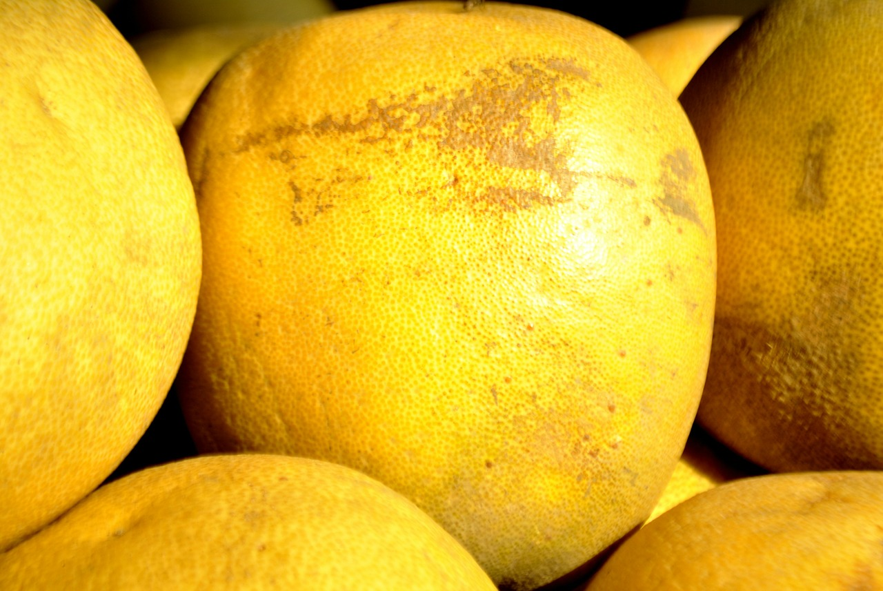 grapefruit fruit yellow free picture