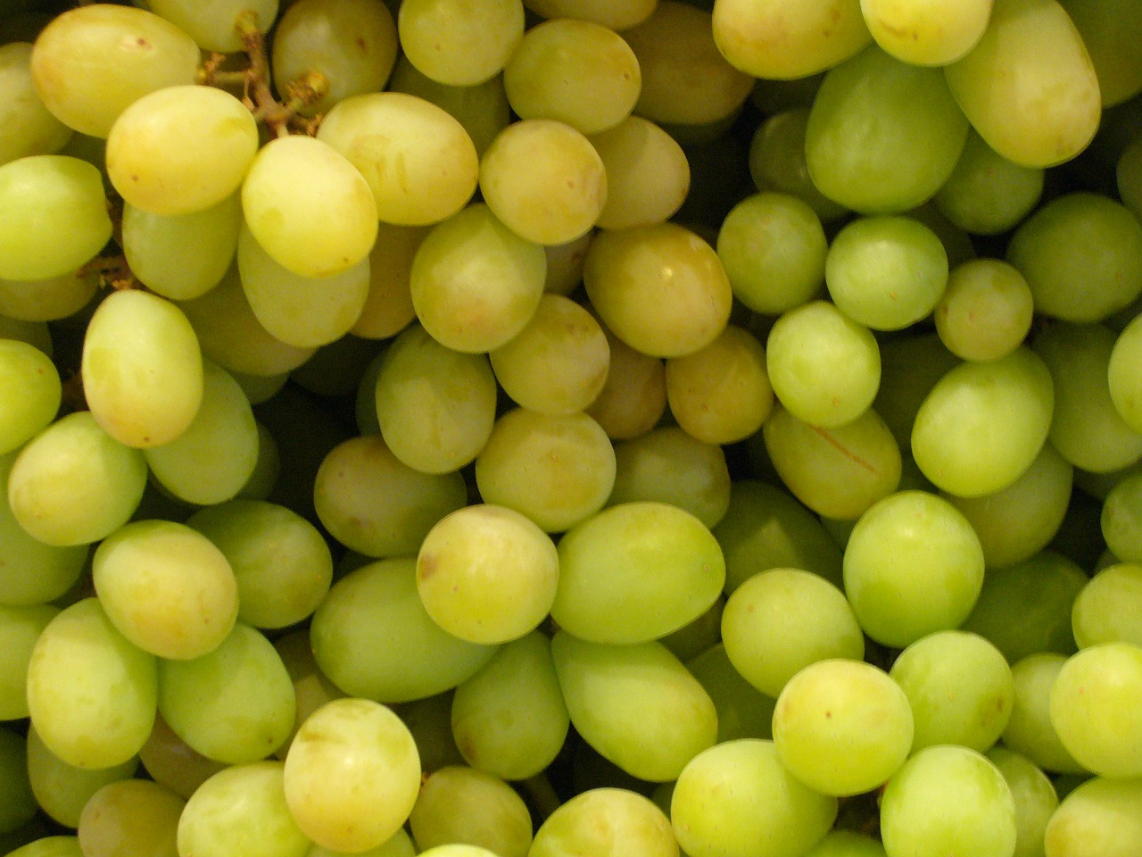 grapes,fruit,green,market,healthy,vitamins,food,free pictures, free photos, free images, royalty free, free illustrations, public domain