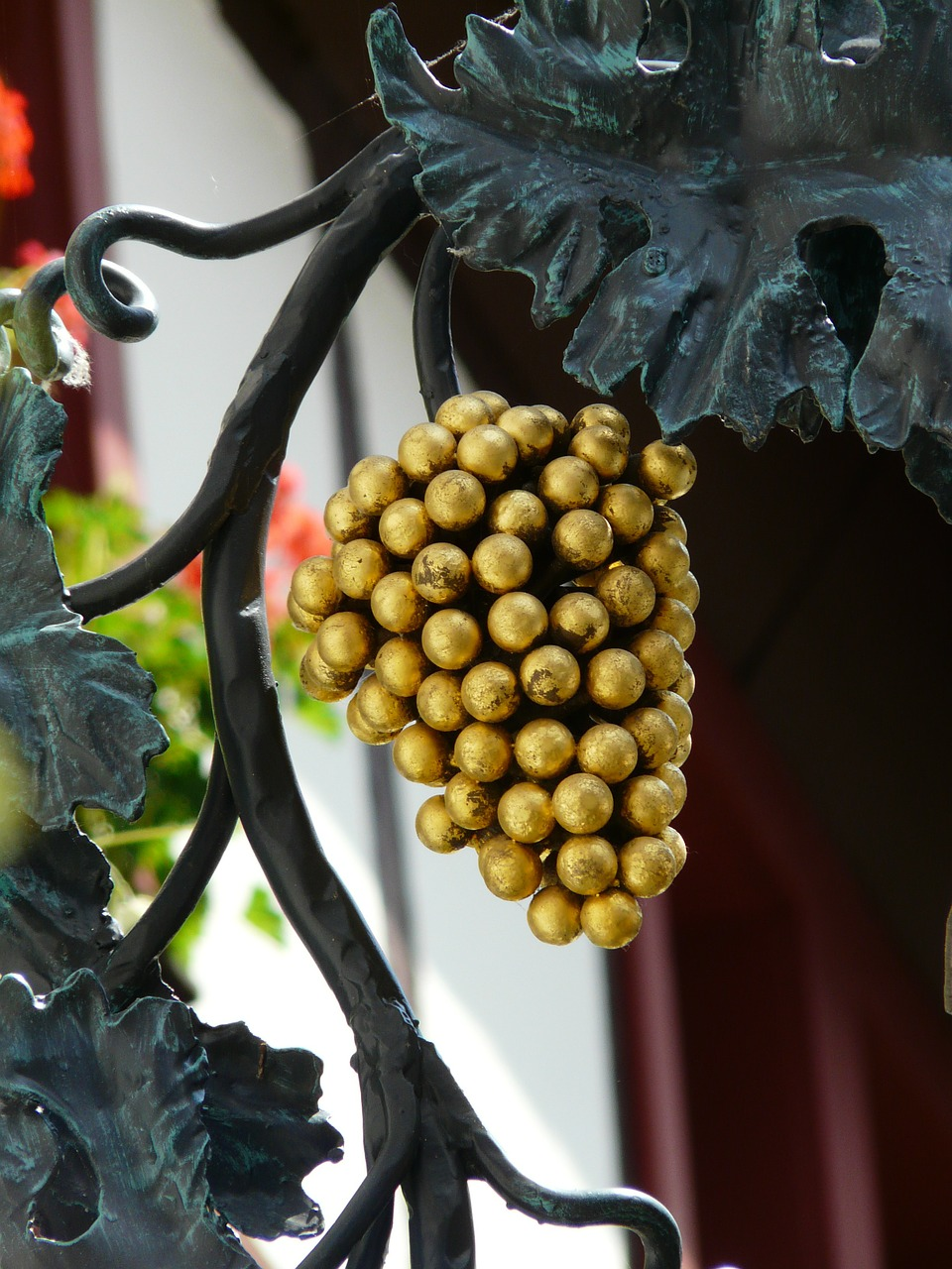 grapes gasthof shield free photo