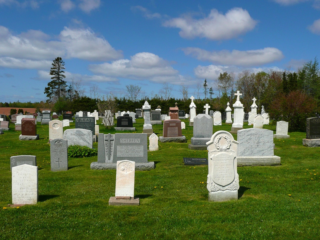 graves cemetery graveyard free picture