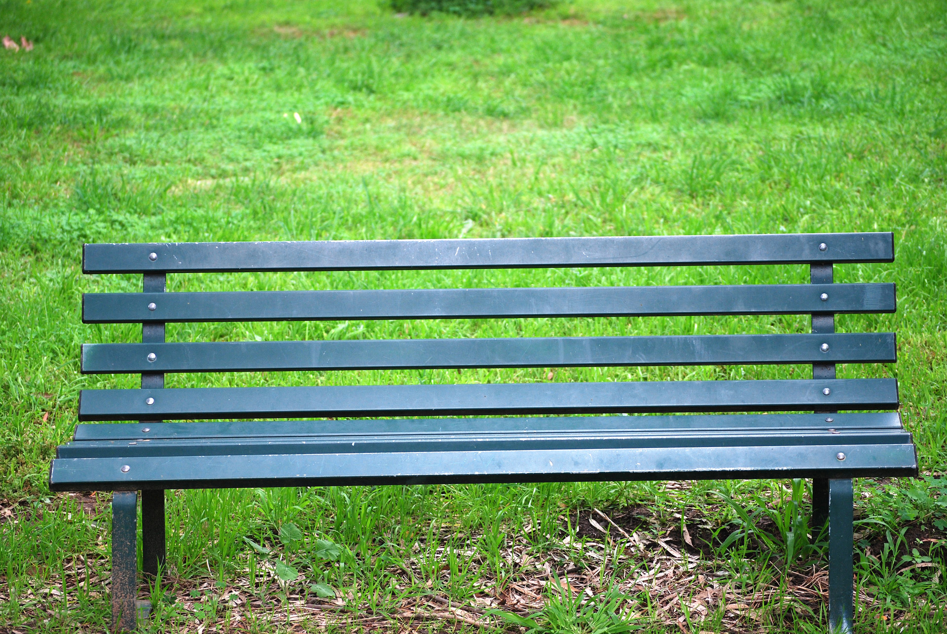 Phenomenal Park Bench Park Grass Green Park Bench Free Pictures Free Ibusinesslaw Wood Chair Design Ideas Ibusinesslaworg