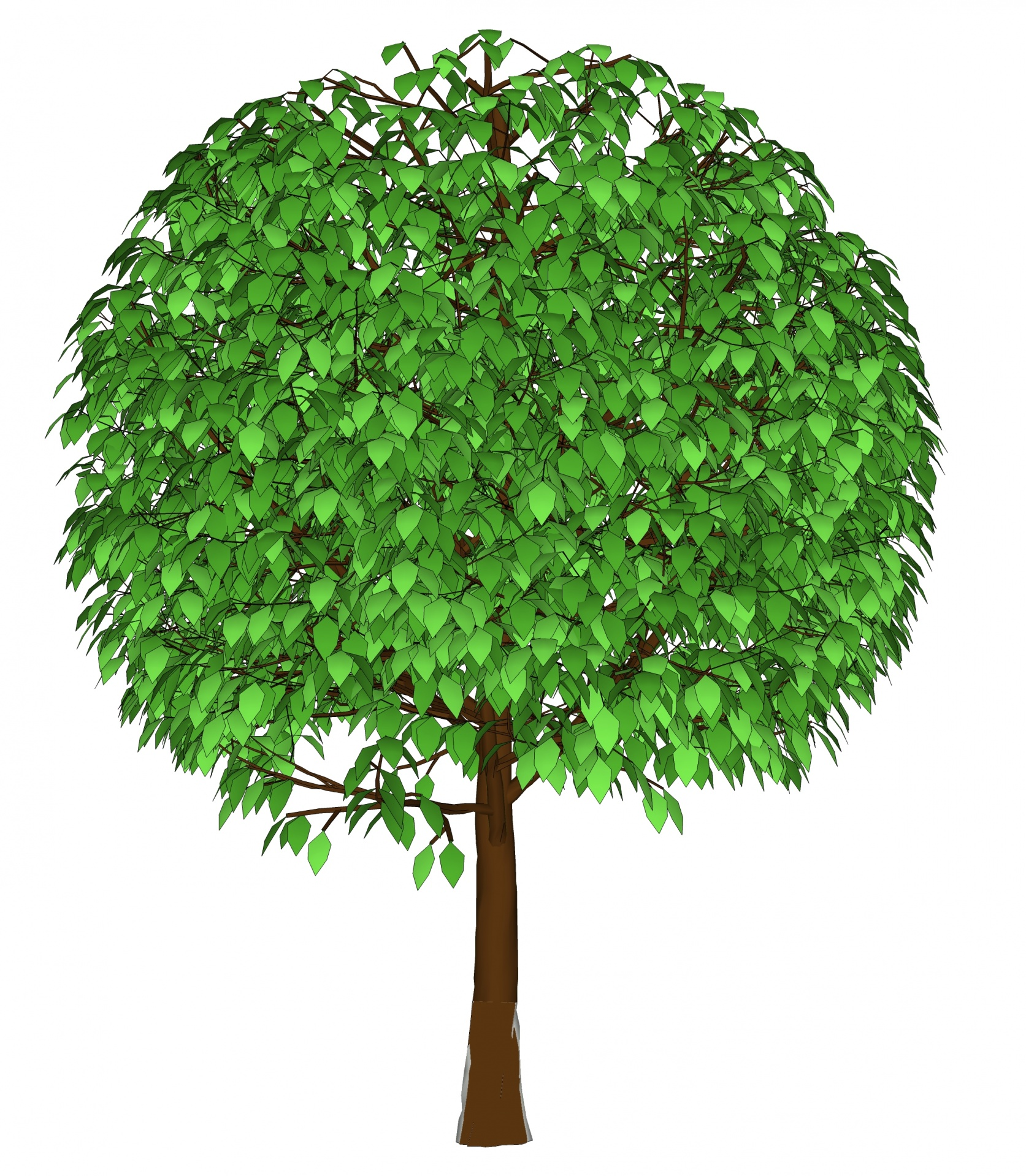 Drawing,tree,3d,green,leaves - free photo from needpix com