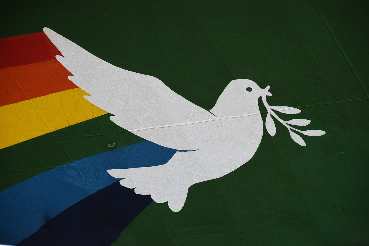 greepeace hope dove free photo