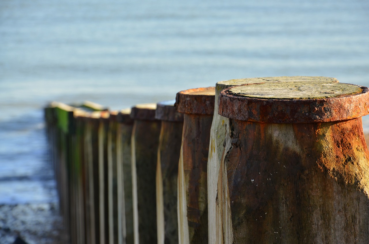 groynes sea nature free photo
