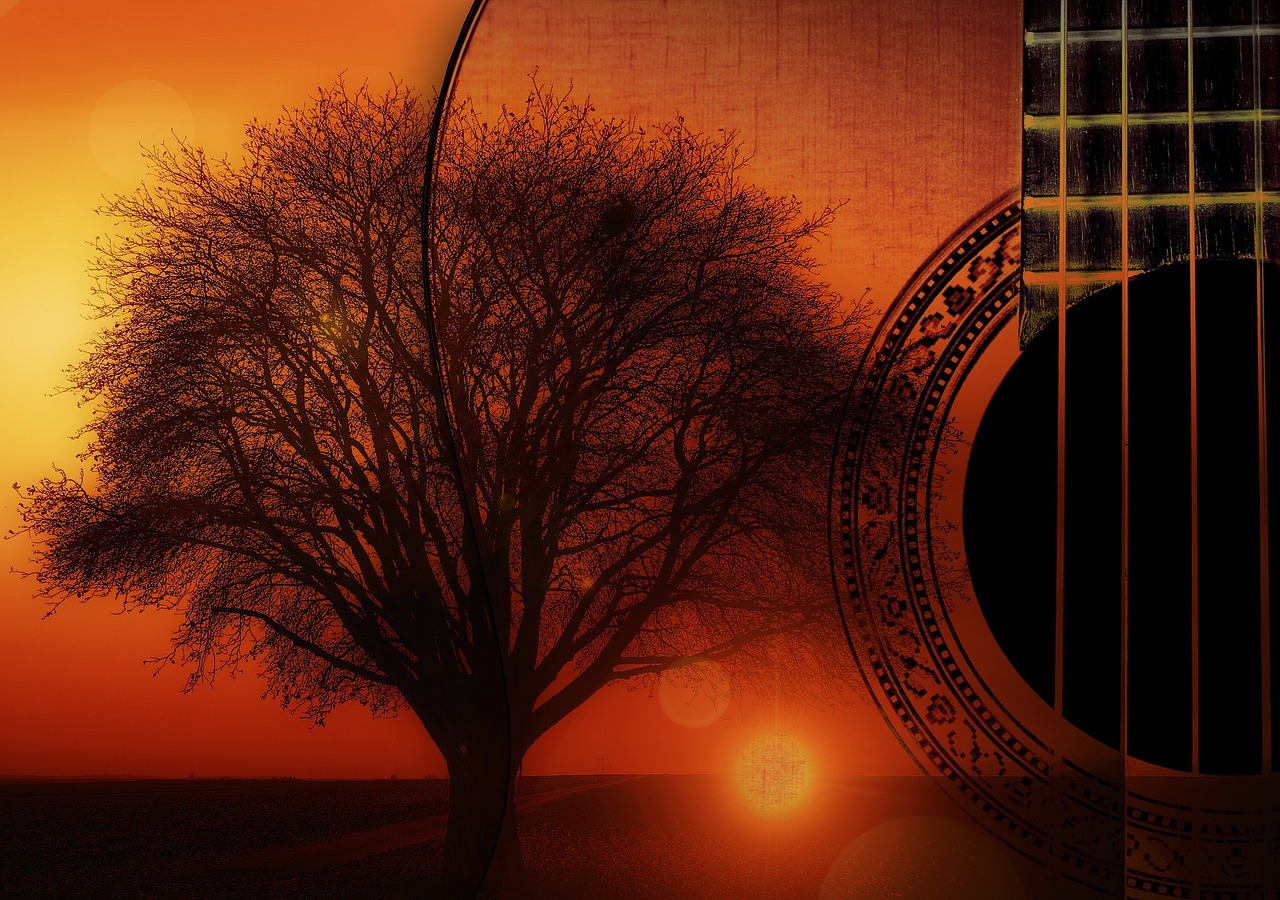 guitar strings instrument free photo
